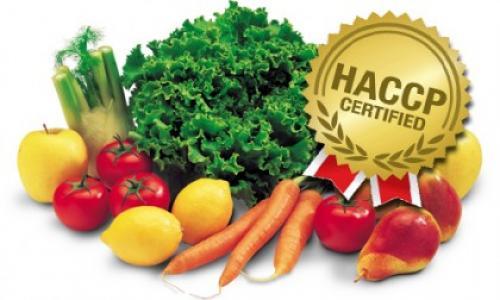 12 BƯỚC ÁP DỤNG HACCP