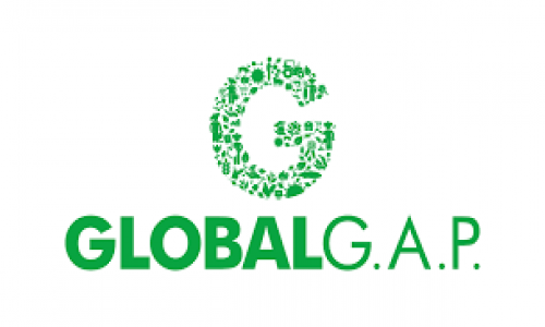 CHỨNG NHẬN GLOBAL GAP