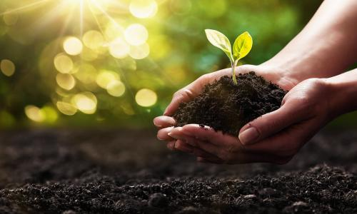 NHO đồng hành cùng mục tiêu phát triển nông nghiệp hữu cơ Việt Nam giai đoạn năm 2020-2030